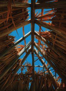 Drewno konstrukcyjne – Zalety drewna konstrukcyjnego